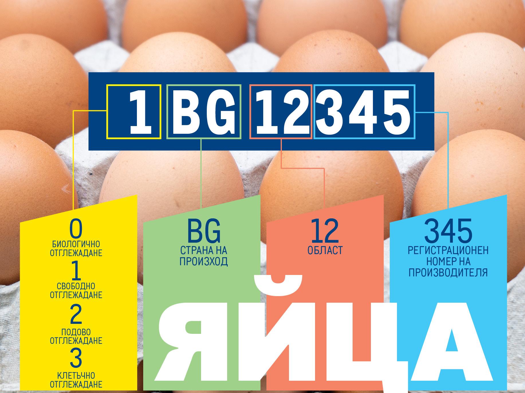 Етичният избор на яйца: много повече от поредната покупка