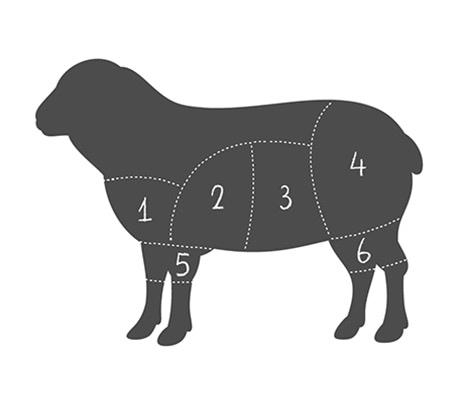 Zuschnitt Lamm