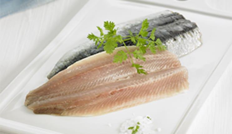 Sardine, Filet