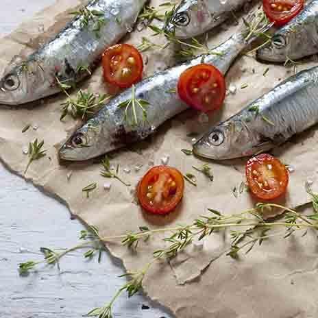 Sardinen: ein gesunder Speisefisch