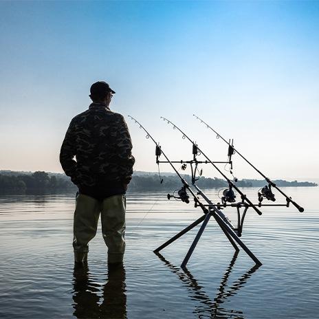 Karpfen frisch angeln