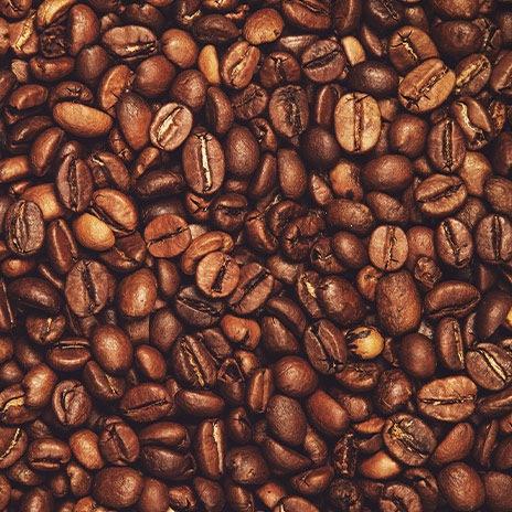 Die Cappuccino Bohne