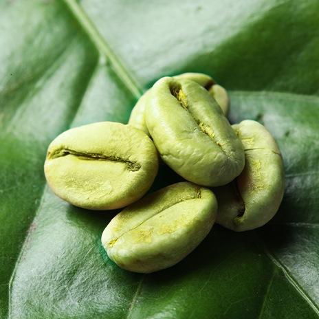 Grüner Kaffee: Das ist drin