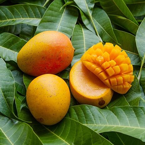 Süße Frucht aus den Tropen
