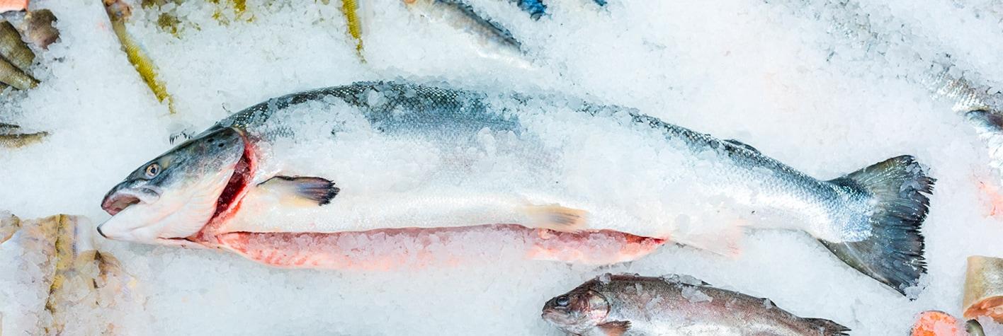 Pescados congelados para hostelería de Makro
