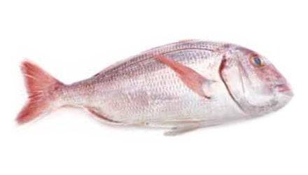Pescados blancos para hostelería de Makro