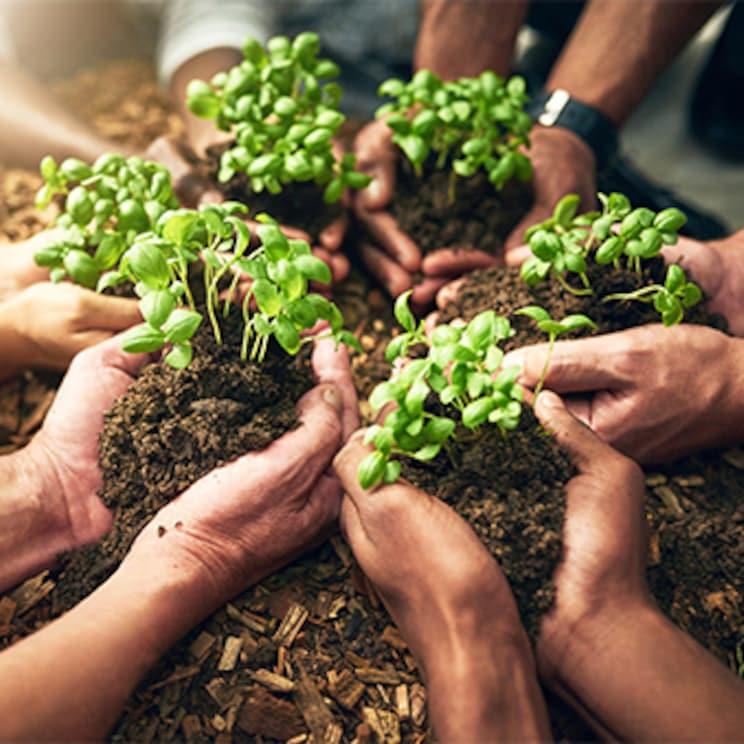 L'engagement environnemental de METRO