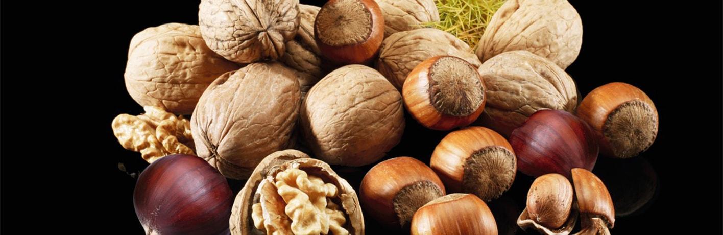 Les fruits à coques