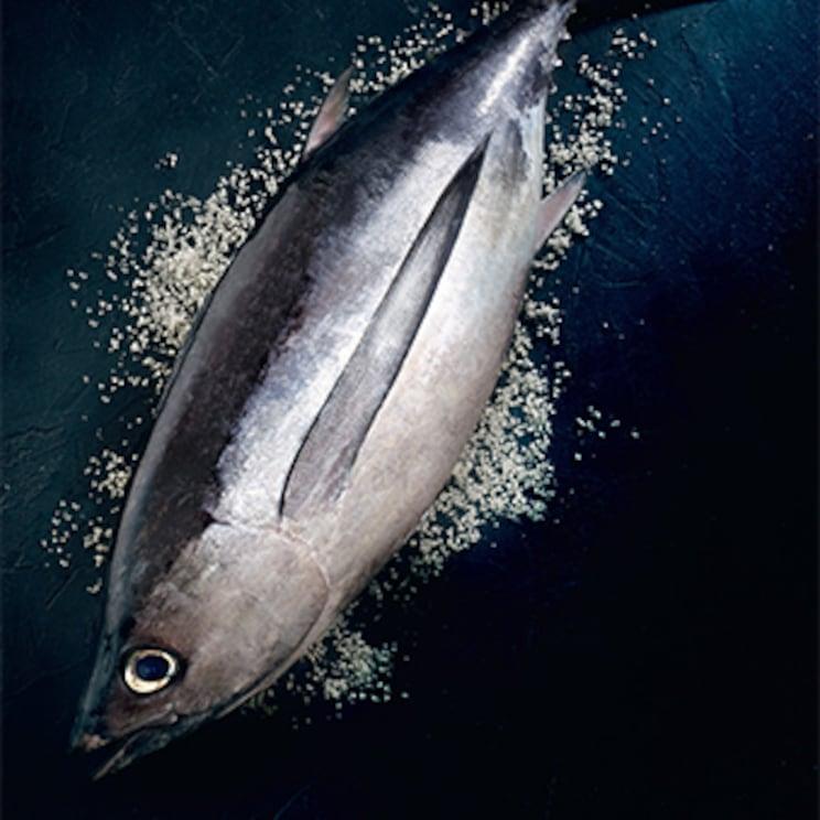 Le thon blanc de ligne