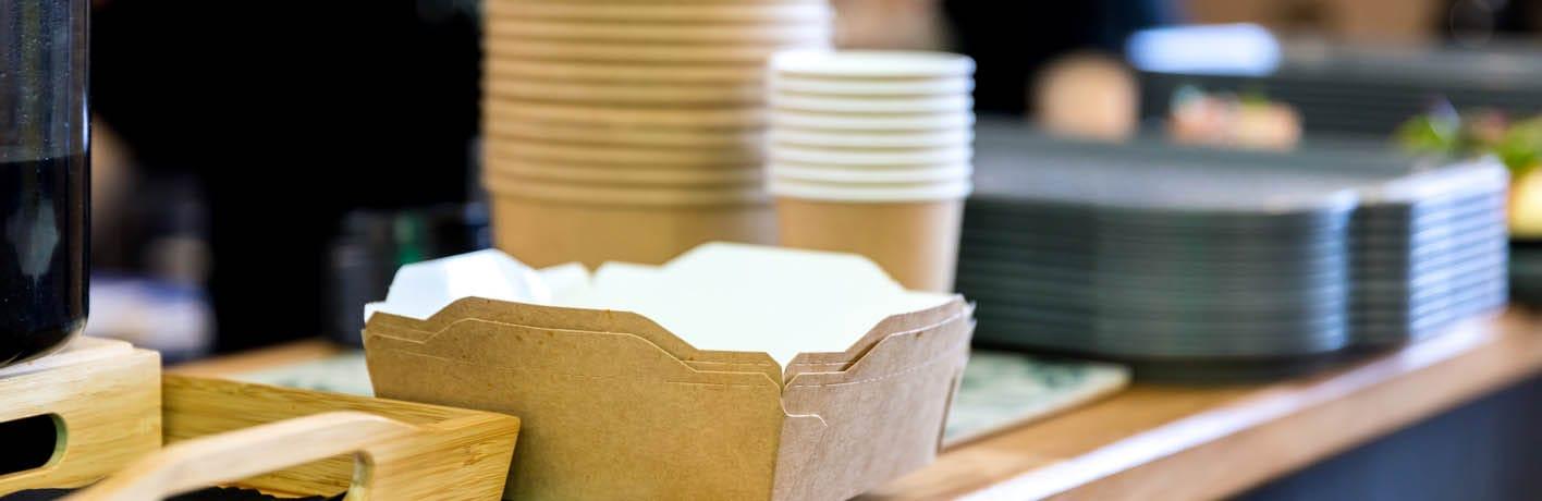 Vaisselles et nappages à usage unique