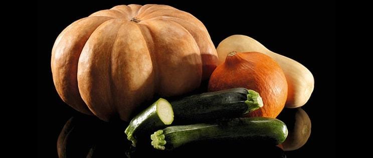 Les légumes cucurbitacées