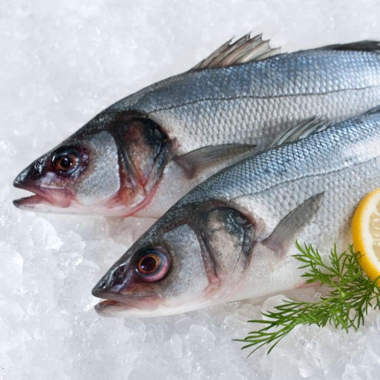 bijela riba image