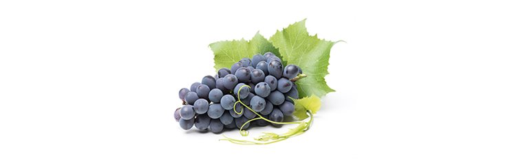 grozdje-crno
