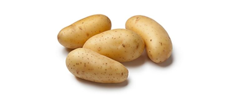 krumpir-princesse448x186