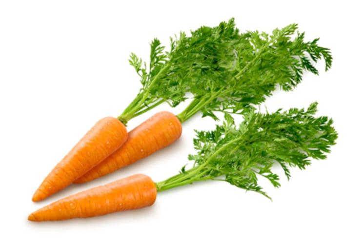 mlada mrkva