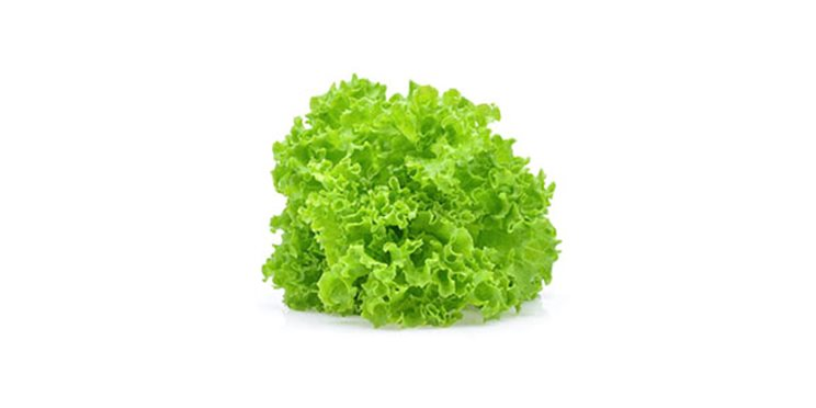 salata-kristalka