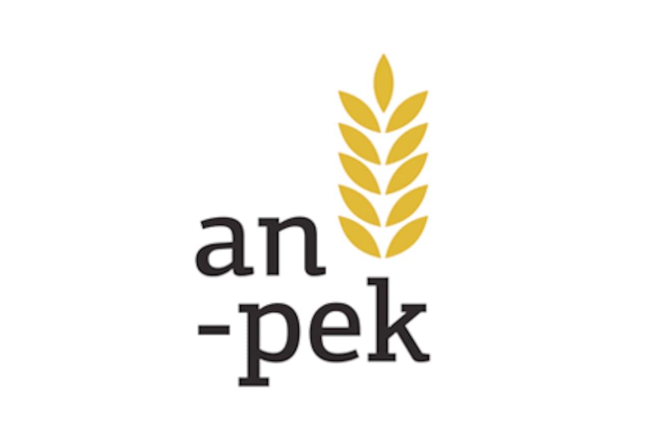 Anpek logo