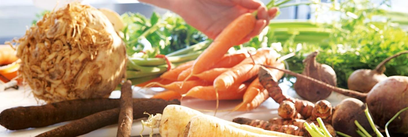 Korenasto povrće